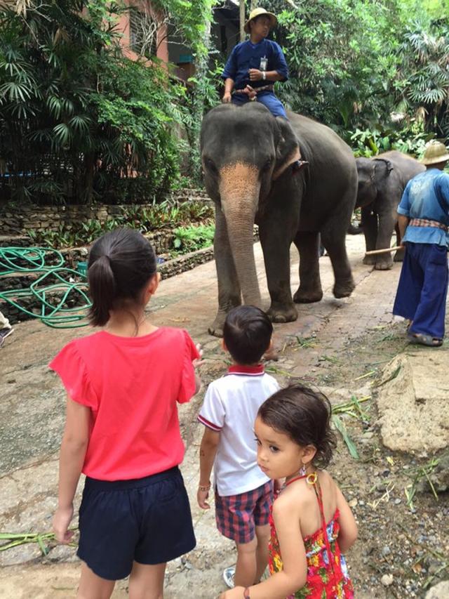 Chiang_Mai_jarconcengco_36