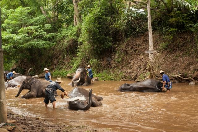 Chiang_Mai_jarconcengco_37