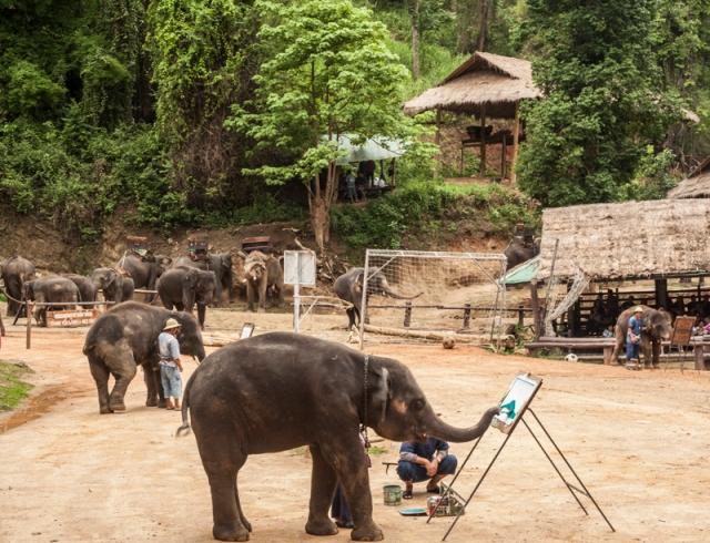 Chiang_Mai_jarconcengco_38