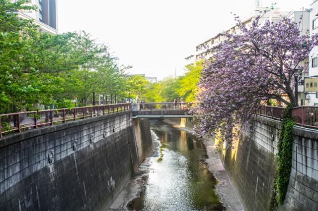 Meguro_River_jar_concengco